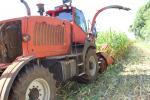 AVISO DA SECRETARIA DE AGRICULTURA